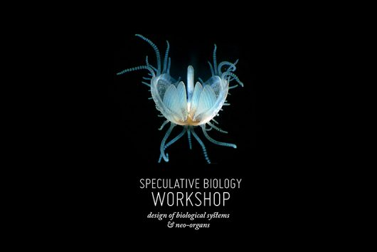 speculative biology workshop, design of biological systems and neo-organs